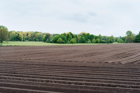 Jak podzielić działkę rolną?